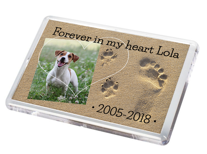 Pet Fridge Magnet