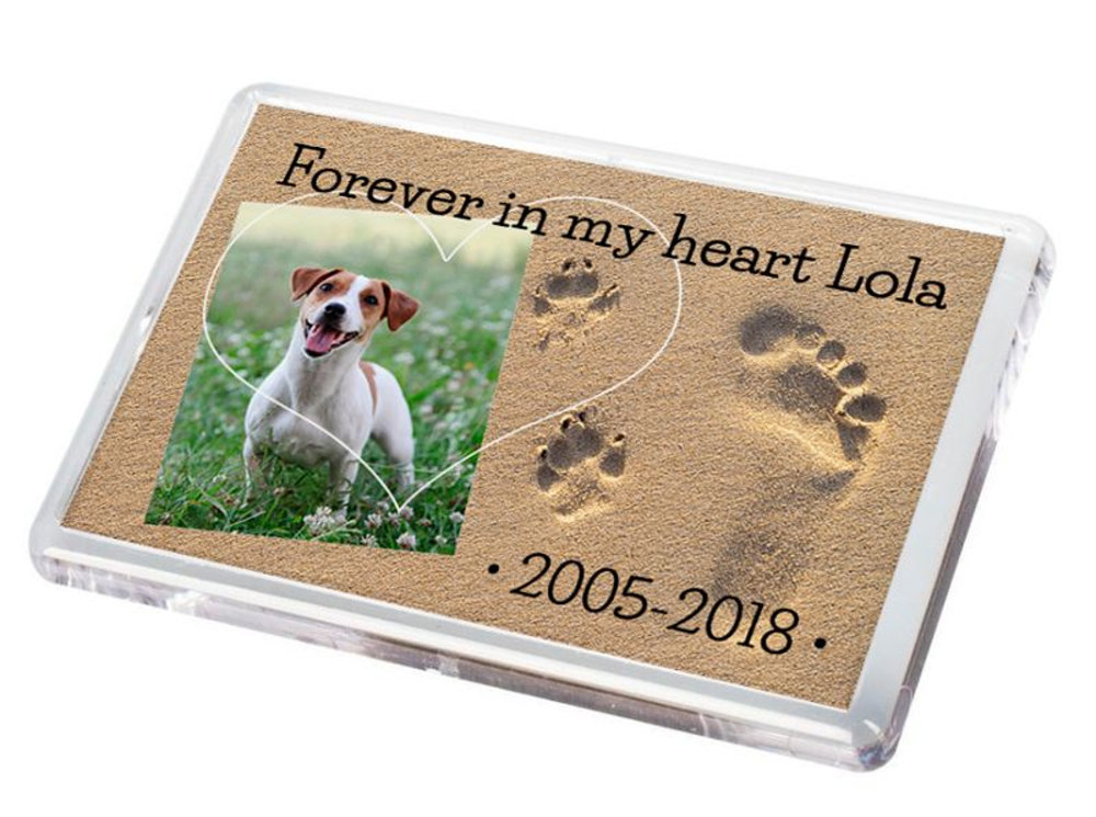 Pet Fridge Magnet 5.psd
