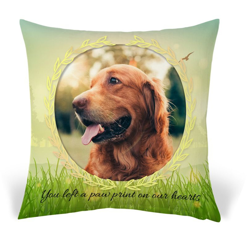 Pet Pillow 11.psd