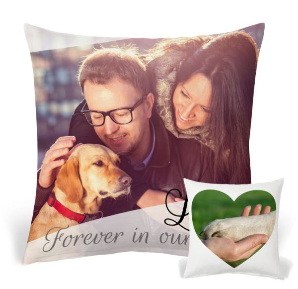 Pet Pillow 17-1