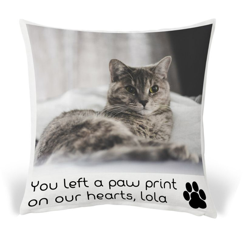 Pet Pillow 8.psd