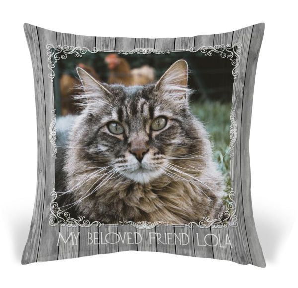Pet Pillow 12