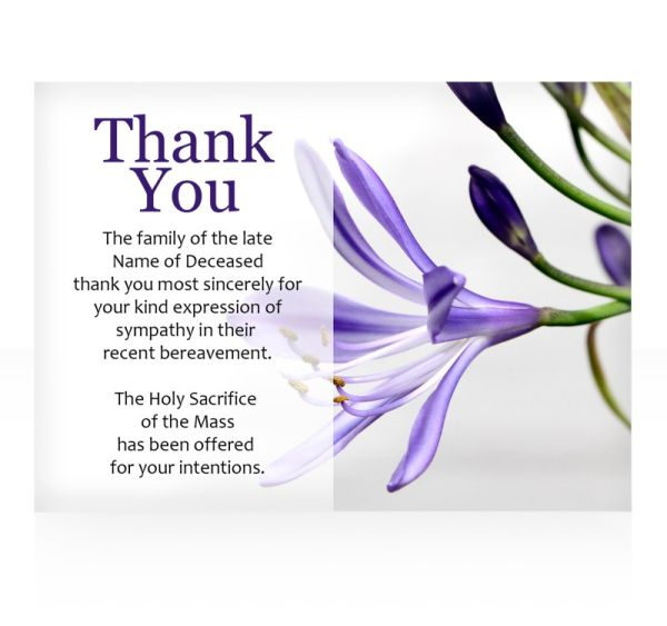 Thank you cards-49